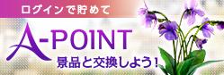 APOINT継続特典第3弾