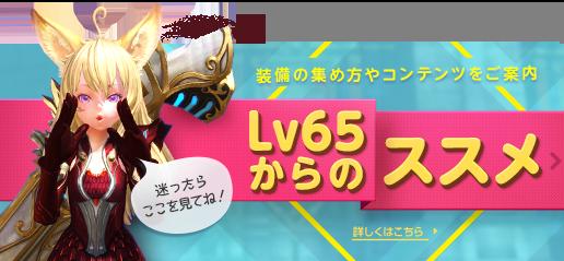 Lv65からのススメ